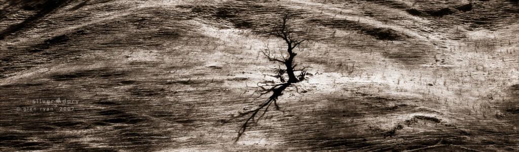 untitled (c) 2007