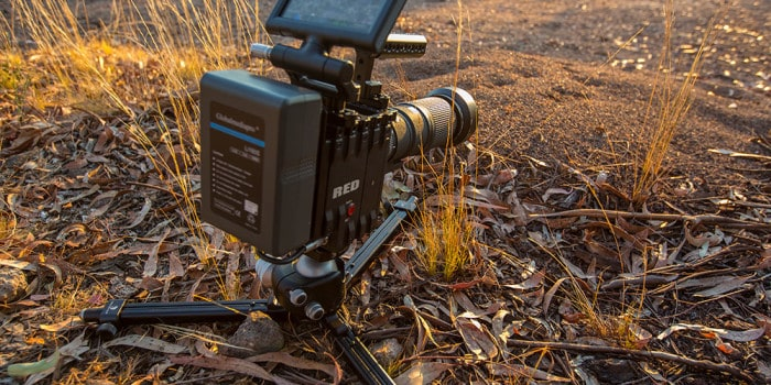 Epic-X IR mod on RRS macro rig - filming ants