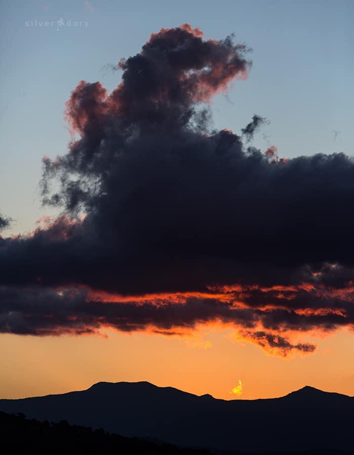 Scrivener Hill | dusk