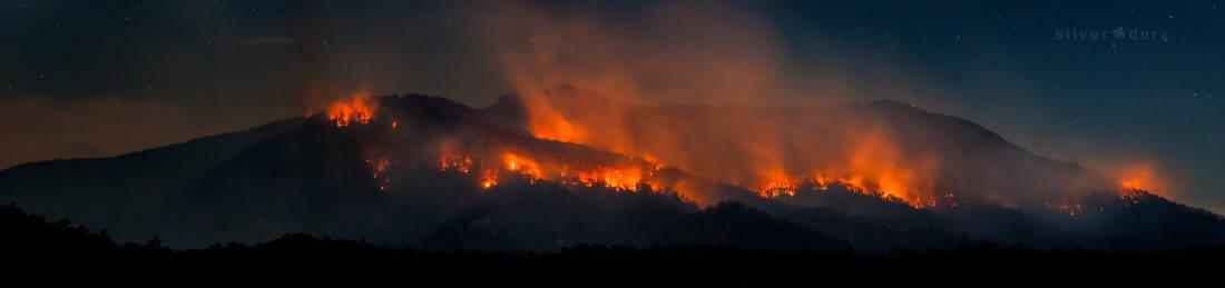 fire | Gulaga / Mt Dromedary